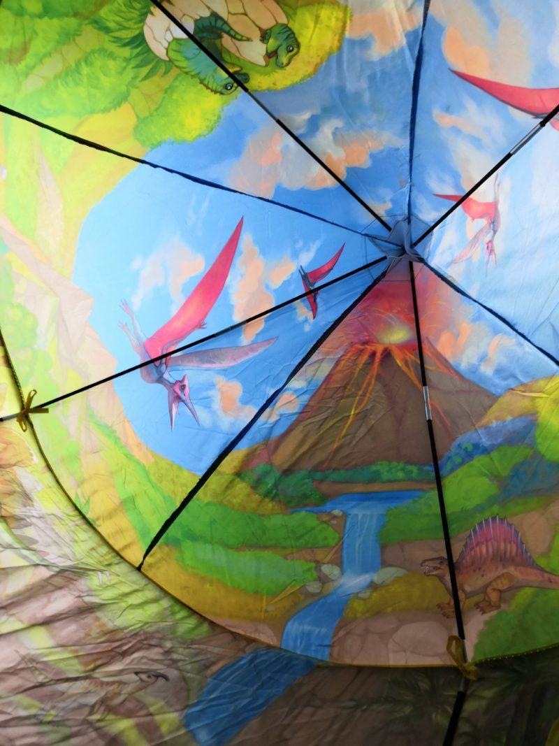 テントの天井 プテラノドン 火山